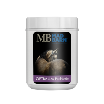 Optimum Probiotic Supplement for Horses