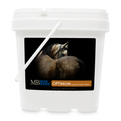 Optimum Digestive Health Equine Supplement