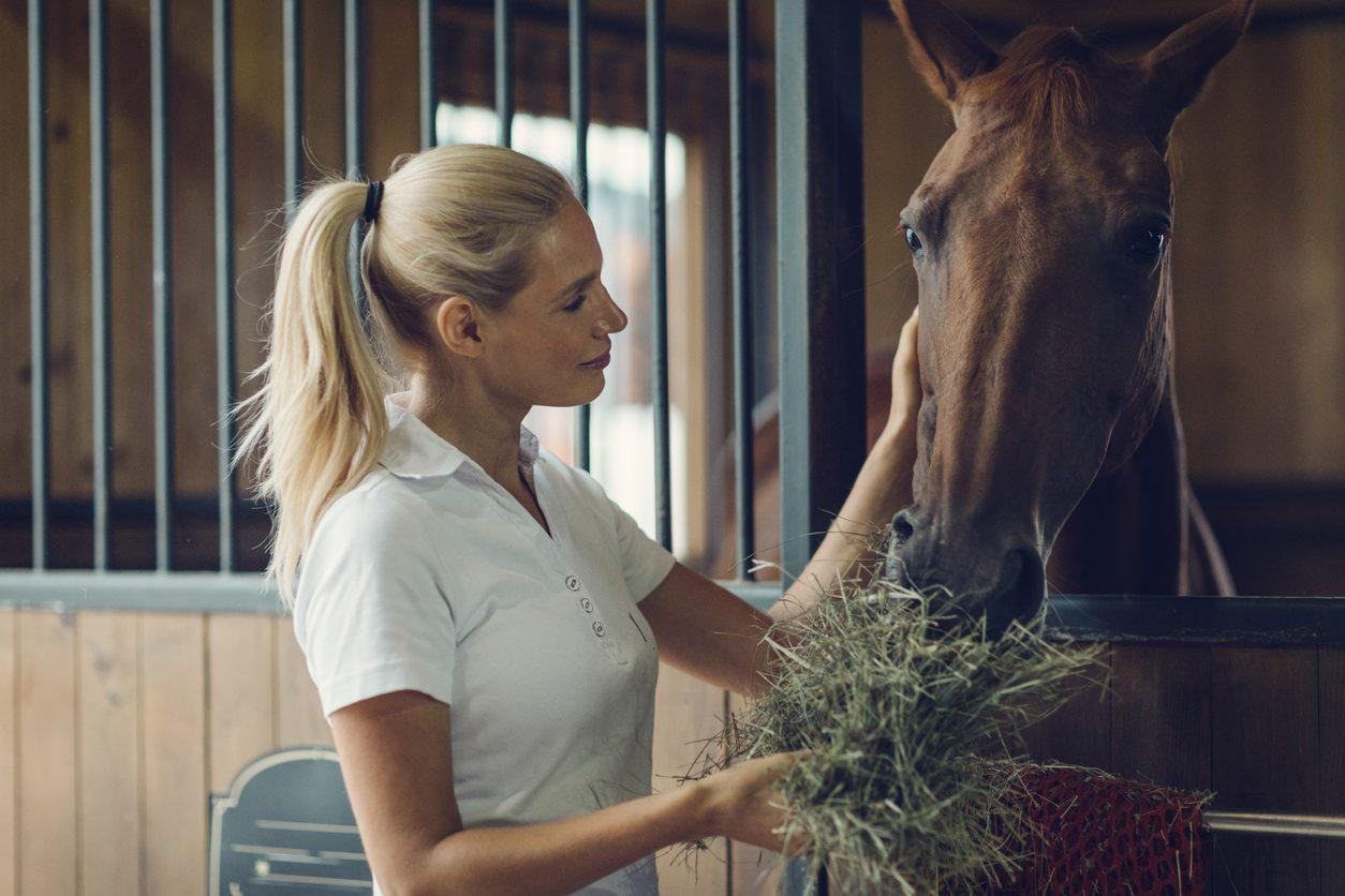 How to feed trace minerals to your horse