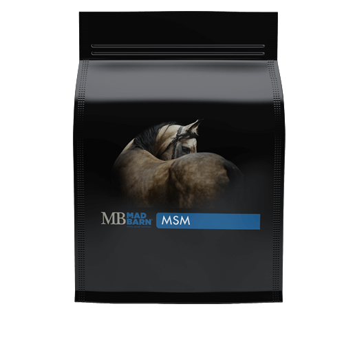 Bulk MSM Powder Equine Supplement